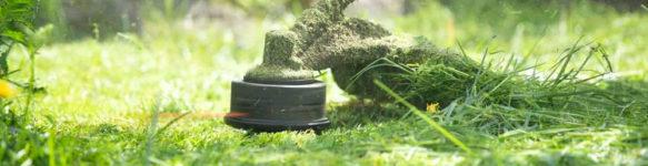 Скосить траву на участке в Минске и области